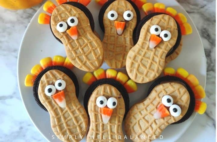 easy no bake turkey cookies