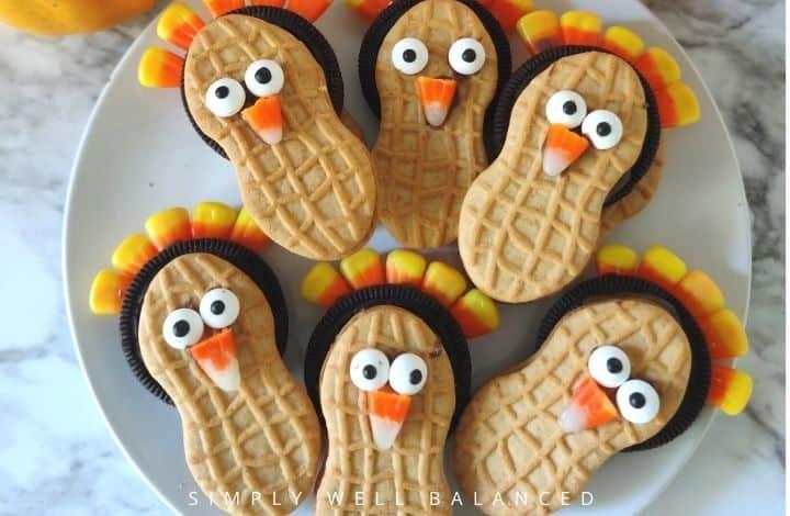 easy no bake turkey cookies